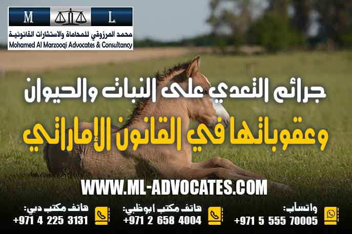 جرائم التعدي على النبات والحيوان وعقوباتها في القانون الإماراتي